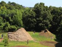 勝坂遺跡公園の竪穴住居復元