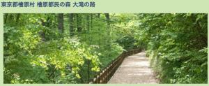 東京都檜原村 檜原都民の森 大滝の路