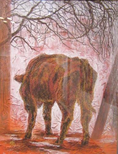赤い子牛ー1
