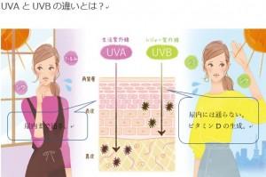 紫外線UVAとUVBの違い