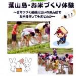 葉山島 田植え体験